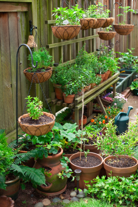Gardening How to Grow Vegetables in Containers